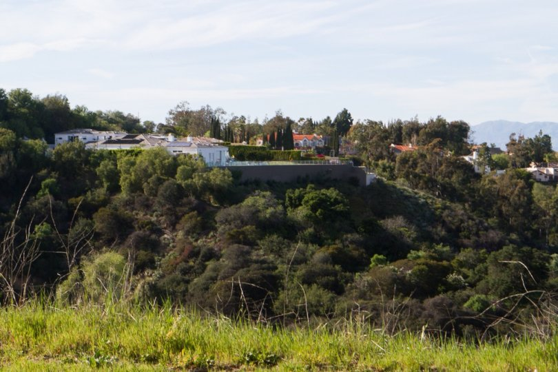 A look at the hillside of Trousdale Estates in Beverly Hills