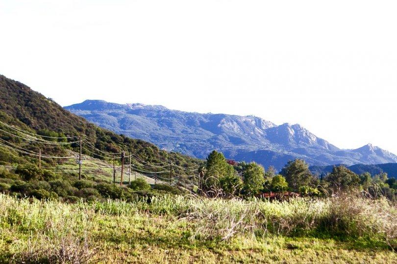 Serene mountain views from Calabasas Park Estates