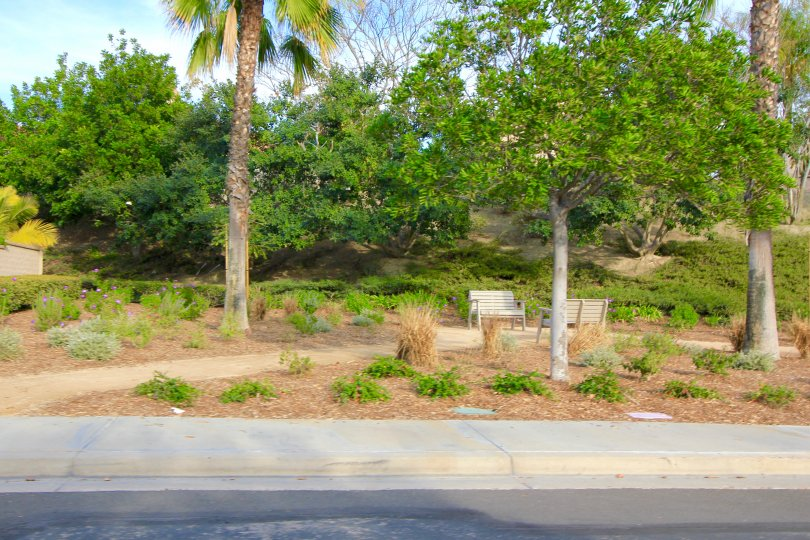 Residents of Palmia Heights in Mission Viejo enjoy a small park