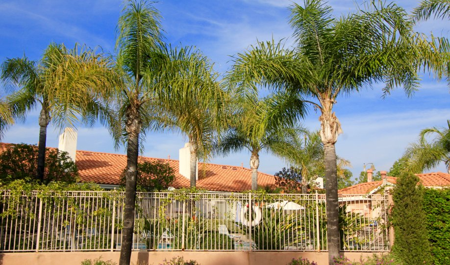 Enjoy a plethora of amenities at Palmia Villas in Mission Viejo