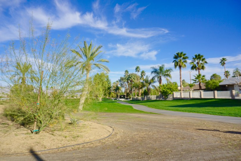 Enjoy a round of golf at Palm Desert Country Club Golf course