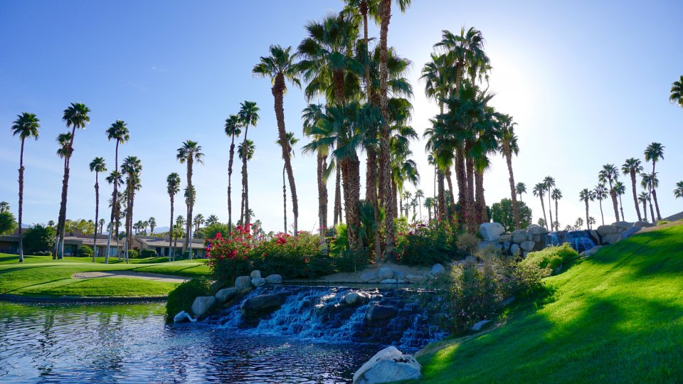 The lake at Palm Valley Country Club is tranquil