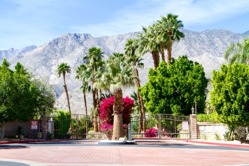 Parc Andreas in Palm Springs is a gated private residential neighborhood