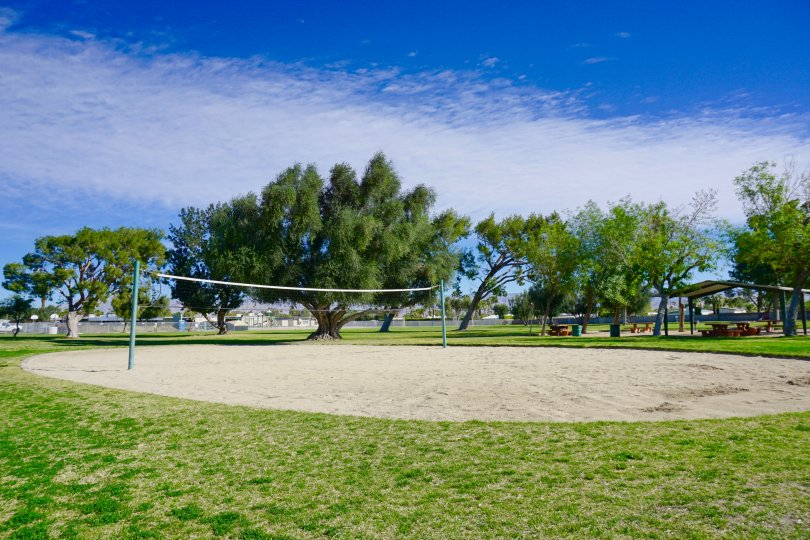 Play a volleyball match at Racquet Club East