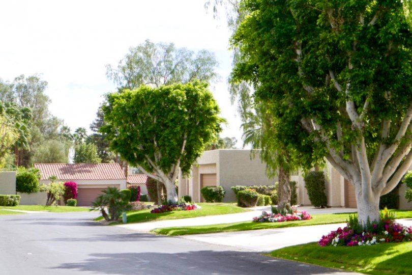 A row of well maintained homes within Mission Hills Country Club