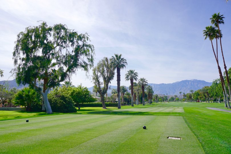 A view from the golf tee at Tamarisk Country Club