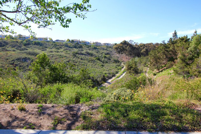 View of the Trail leading to the Mar Fiore Community