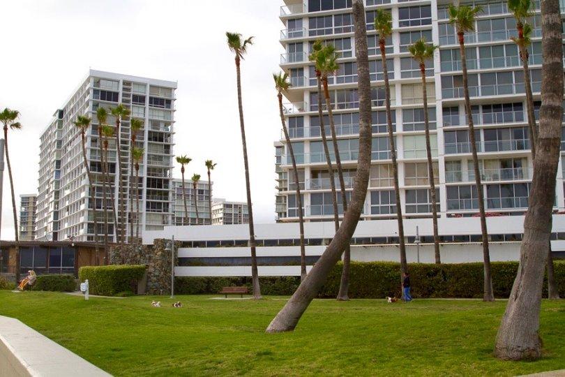 Coronado Shores High rise buildings offer resort rentals and condos
