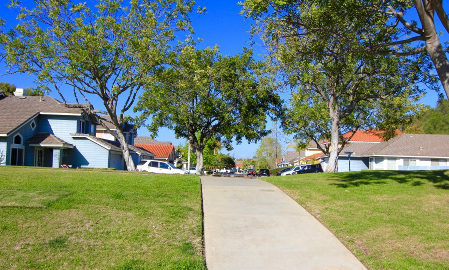 A view of the homes in family friendly street besides the Park in Lakeview Estates Neighborhood in Oceanside California