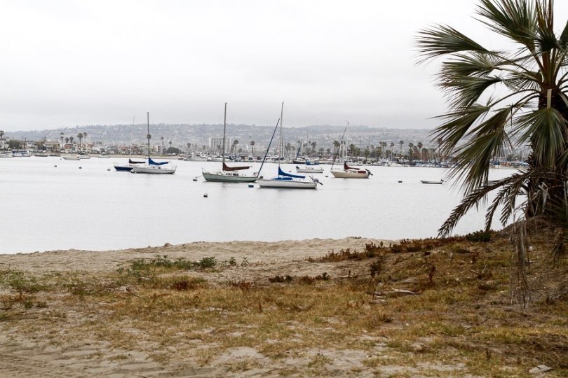 Boats in Mission Beach Bay area