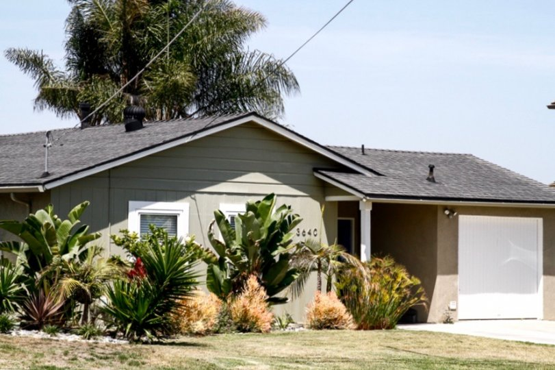 Homes for sale in San Diego at Plumosa Park