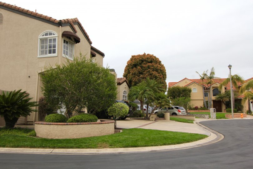 Street view of the homes in Edwards Hill