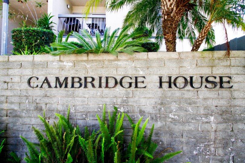 Cambridge House Culver City
