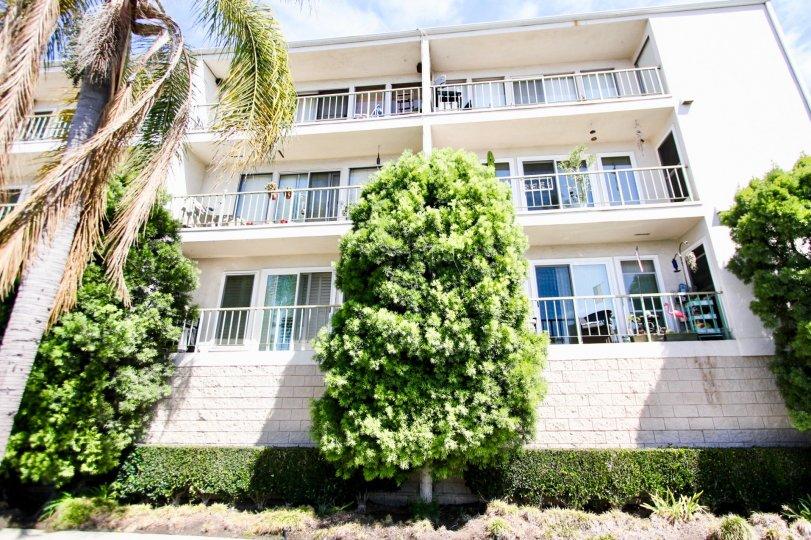 Villa de Oro Long Beach