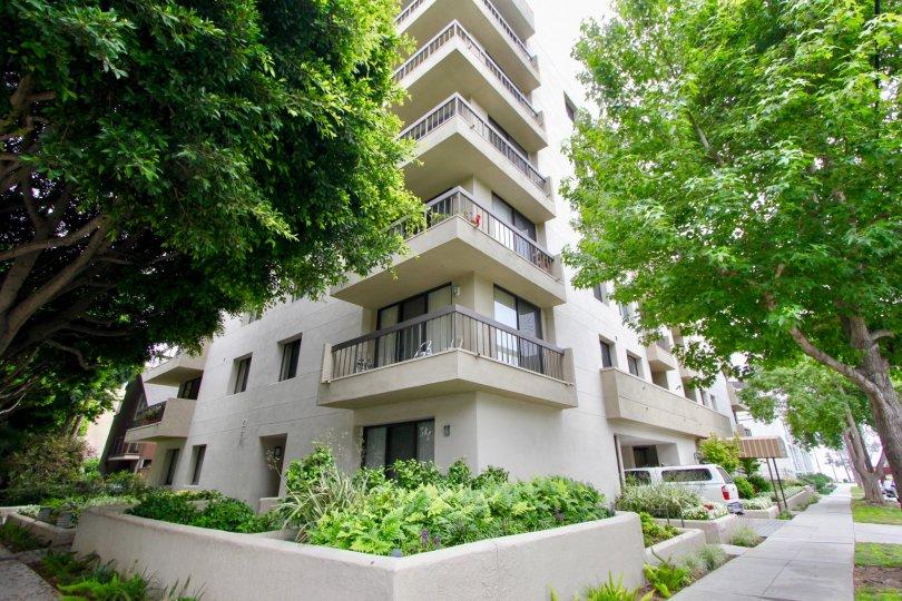 Pacifica Terrace Santa Monica
