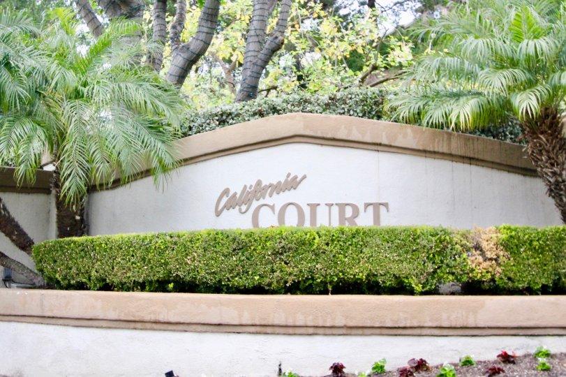 California Court Mission Viejo