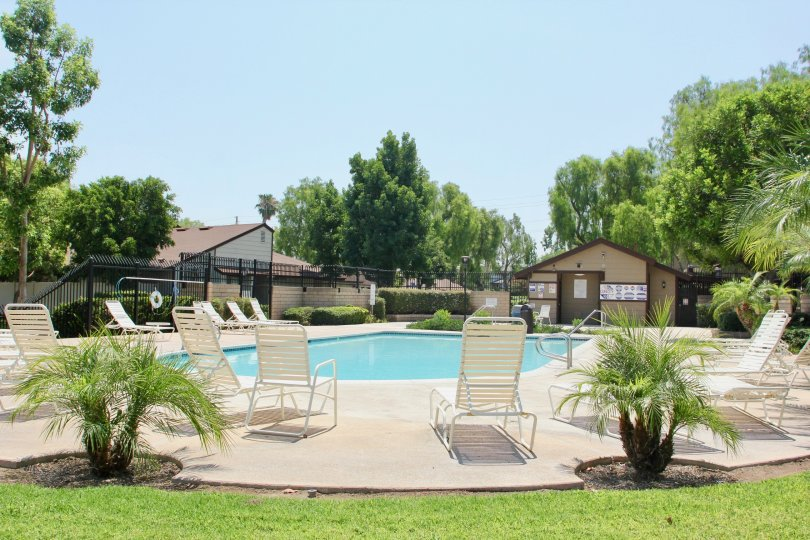 A beautiful view poolside on a sunny day outside of Laurelwood located in Corona, California.