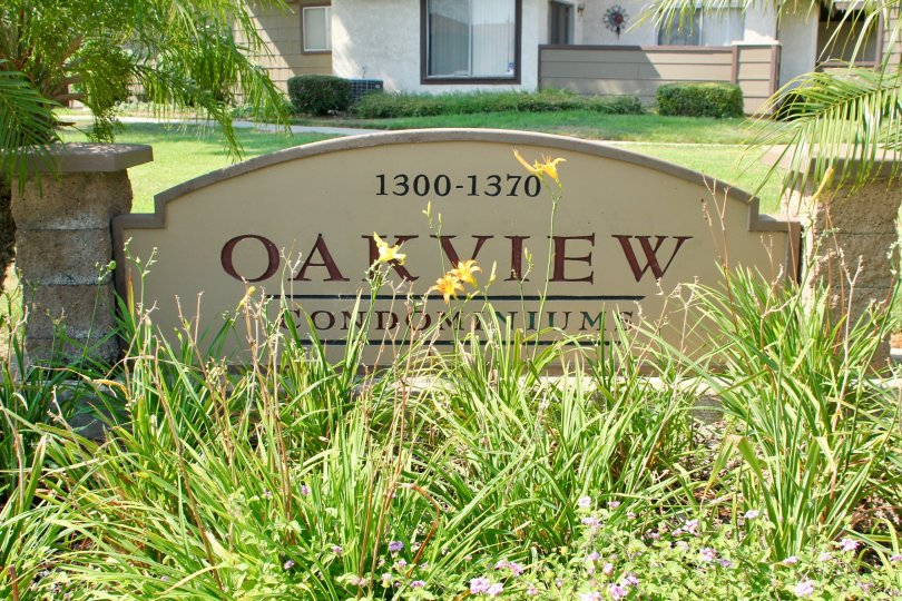 Oakview is written on a sign in a garden in Oakview community