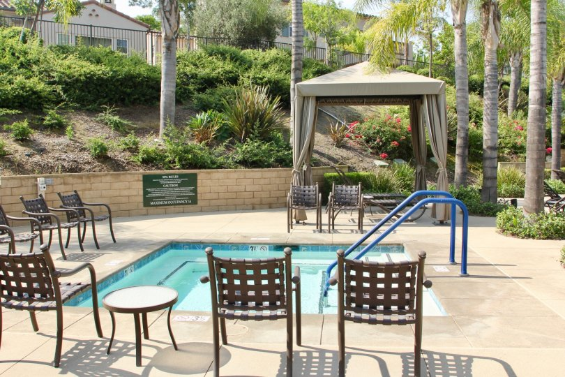 Pool and patio area with manicured landscaping and palm trees