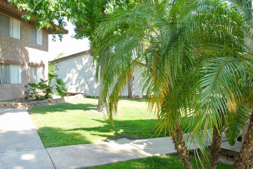 Beautiful landscaping on a sunny day at The Lakes at Corona Community in Corona California