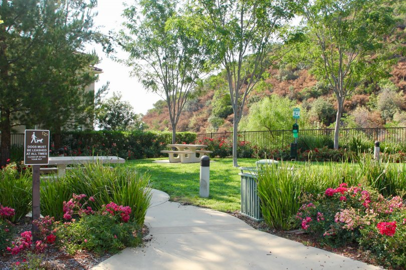 Flowering gardens adorn this dog park and picnic area in the hills of this living community