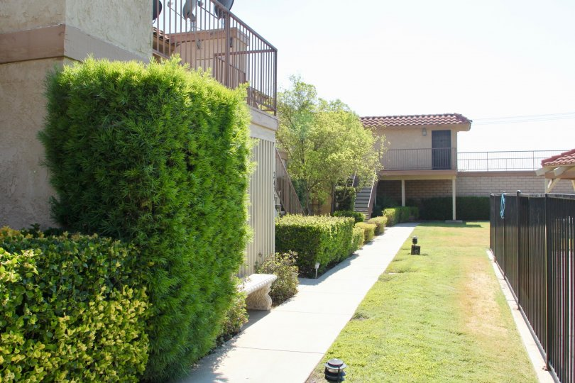 Beautiful sunny day at the Acacia Gardens apartment complex with many well groomed hedges, a bench, and an iron fence.