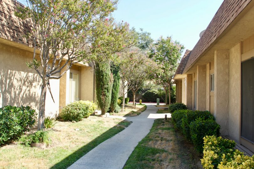 Sunrise Village and her tastefully finished apartments, hemet, Californoa