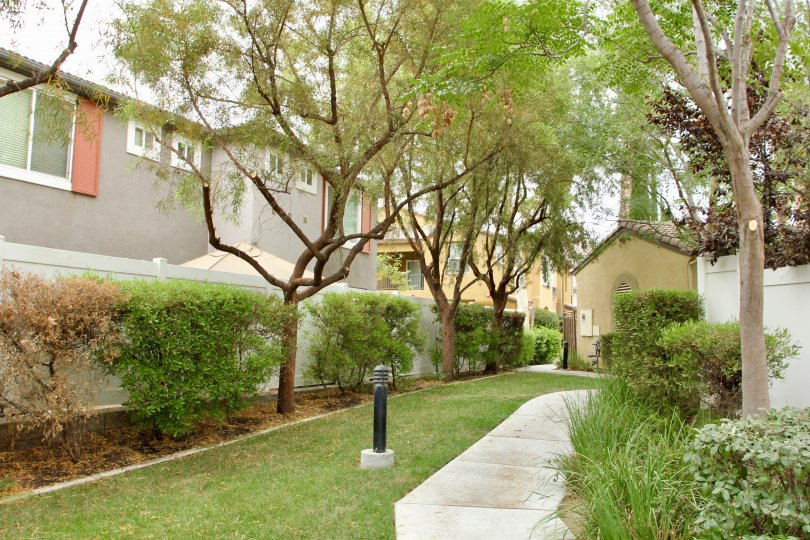 Beautiful lush green park in Promontory Pointe apartments located in Moreno Valley