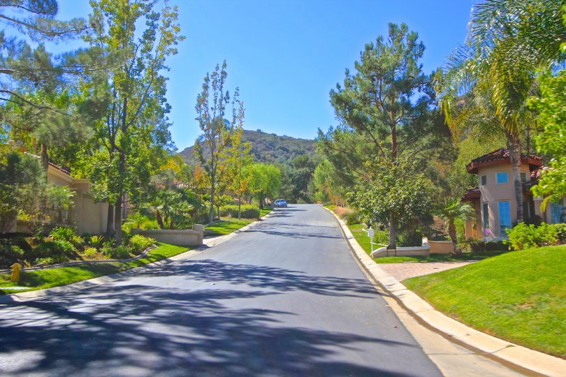 Houses and trees line this picturesque street in Bear Creek Villas in Murrieta