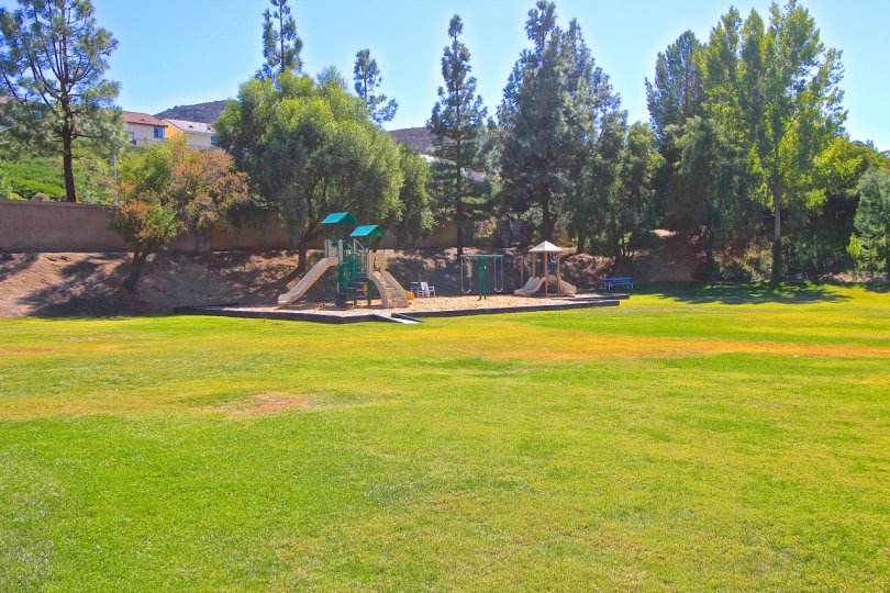 Fairway Estates at Bear Creek has a large green with playground