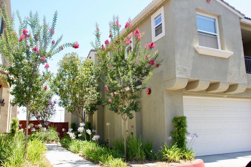 Amazing beautiful North Oaks Apartments, Murrieta, California