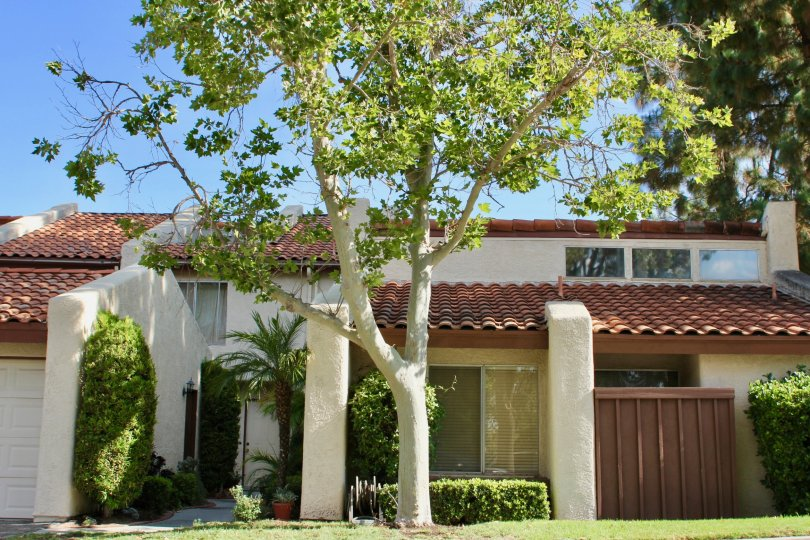 Spanish roofing with side gardens, shrubs, grass and beautiful trees adorn this condo