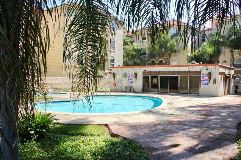a good view of the pool at Buena Vida, riverside, California