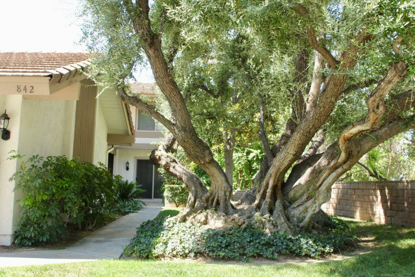 The best of Canyon Crest Villas, riverside, California