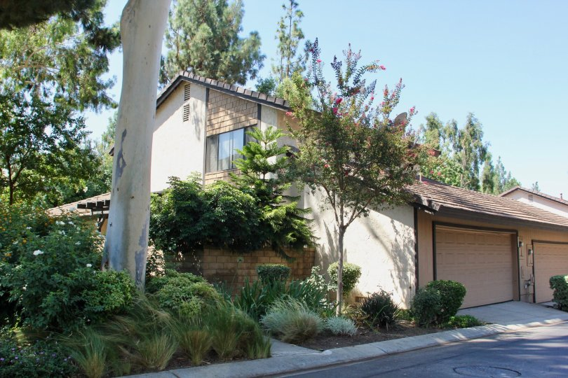 A duplex home in Canyon Tree with a two car garage and foliage