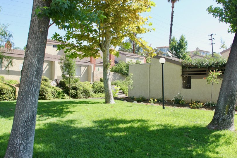 A secluded backyard with a lamp post in the Crest View Estates community.