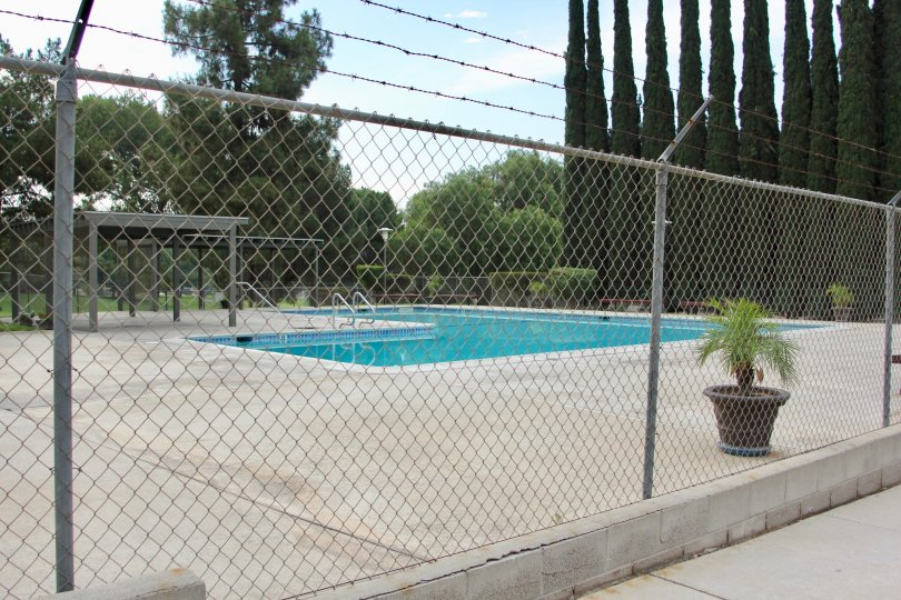 Nice sunny day and nice pool come swim with us at the Country Club in California