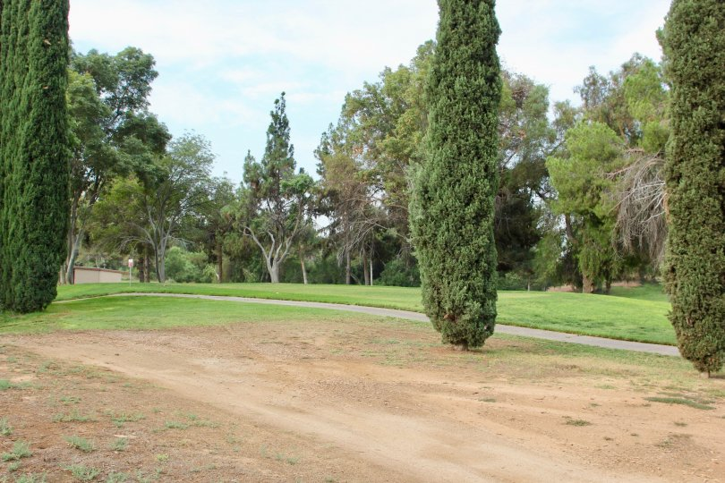 A uniquely green view at Jurupa Hills Country Club, riverside, California