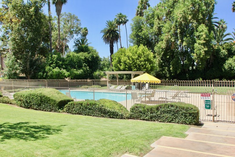 A PLACE TO ENJOY THE GARDEN AS WELL AS SWIM IN RIVERSIDE CITY OF PALM tERRACE AT CALIFORNIA