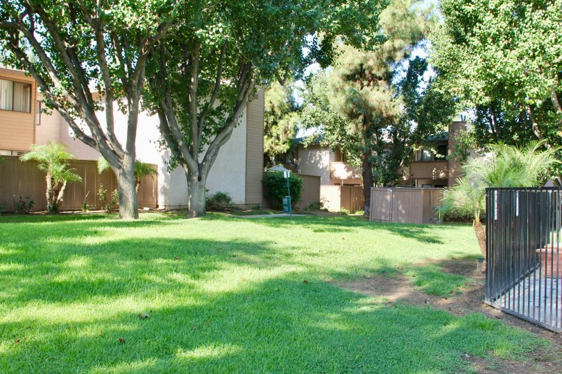An amazing house with many greenaries lo love relaxed with your family in palmilla riverside California