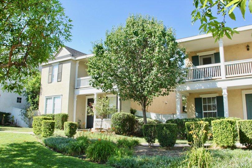 creamy walls of An Apartment in Savannah community, riverside, California