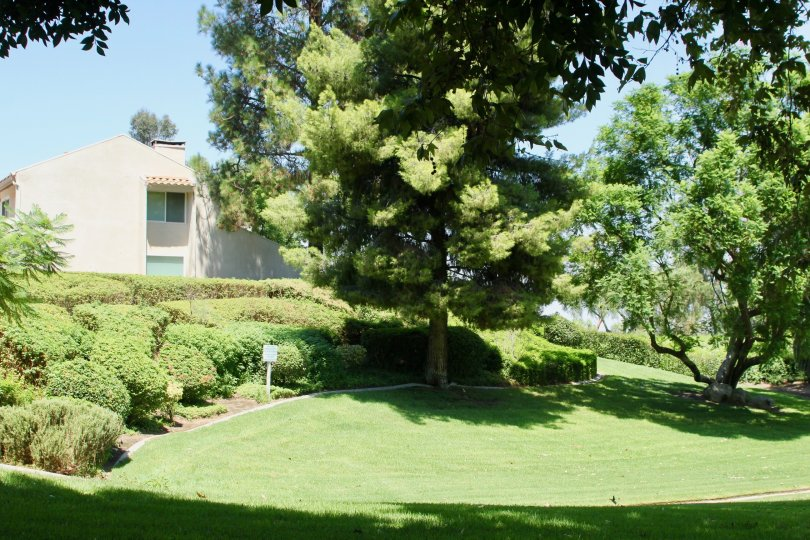 a garden with most beautiful in riverside city in california