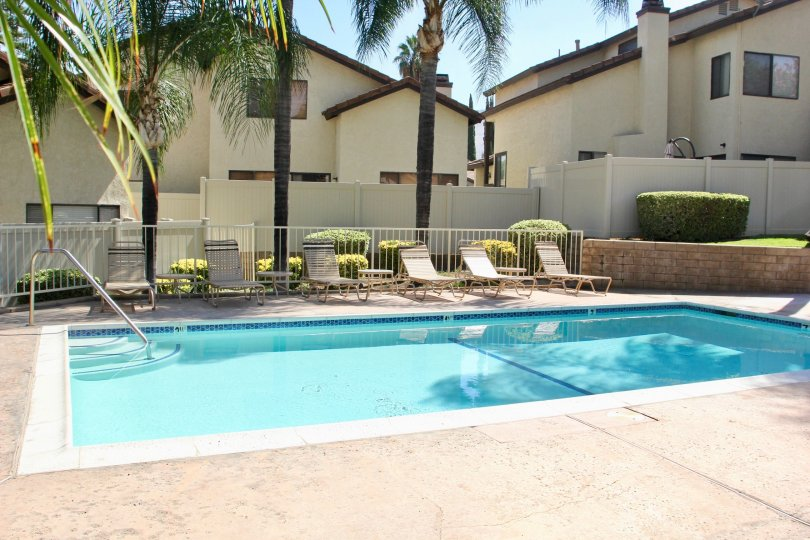 A nice and clean pool area with The Crest with palm trees around and ample poolside tanning seats