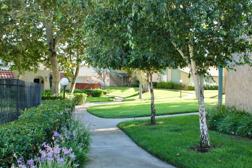 Street view of University Greens community and her surroundings, riverside, California