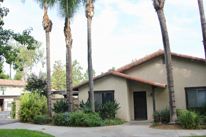 A medium house for your small family with greenaries in Victoria village riverside california