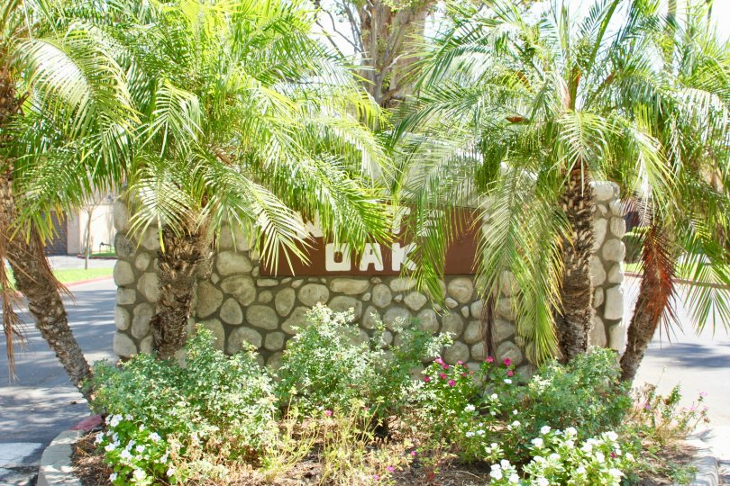 White Oak community in Riverside California is filled with palm trees and flowers and offers plenty of sun and shade