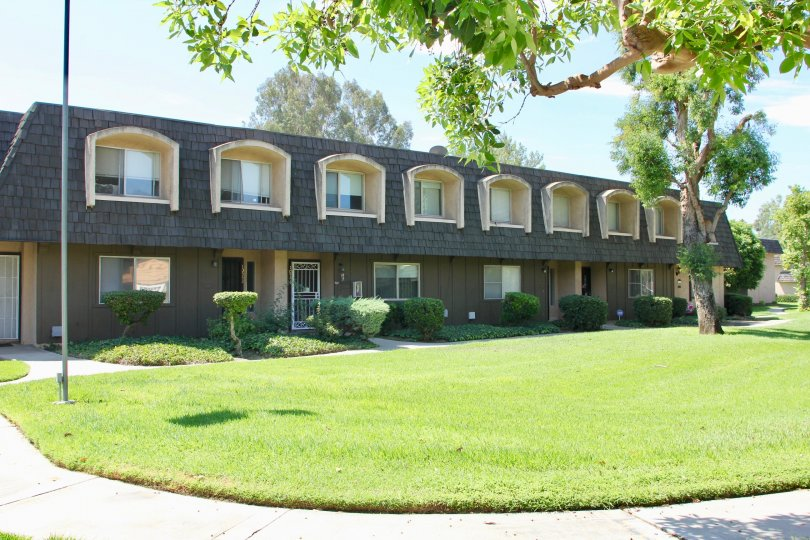 White Oak Apartments and her super fine neighborhood, Riverside, California