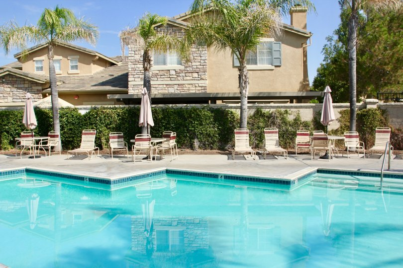 Clear pool surrounded by lounge chairs and palm trees in Auberry Place