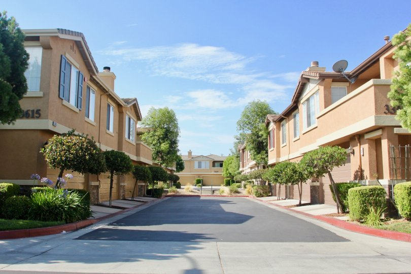 Looking down a street in Auberry Place, a neighborhood in Temecula, CA
