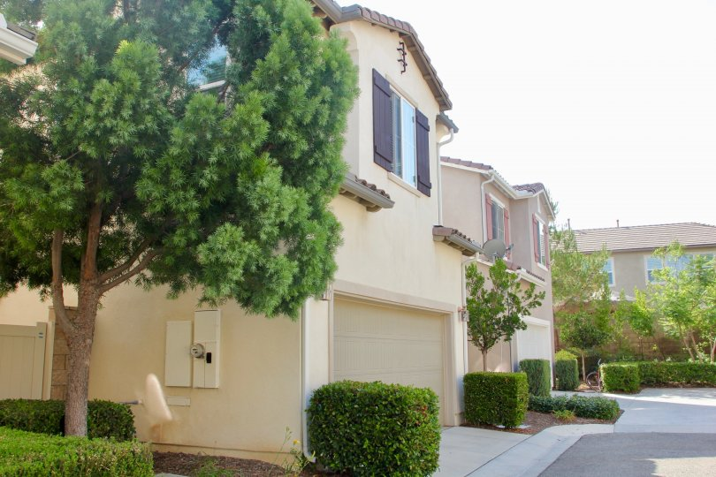 Manicured trees and shrubs around the garage of these townhomes